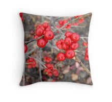 Red Berry Wine Throw Pillow