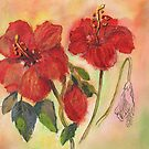 Transitions-Hibiscus by bevmorgan