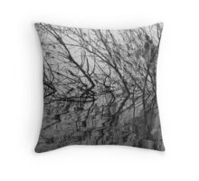 Sticky Reflections Throw Pillow