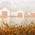 """""""Morning Boat Sheds"""",Anglesea,Great Ocean Road,Australia. by Darryl Fowler"""