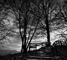 The Final Stairs by Brandon Hayes