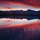 Eastern Sierra Reflection by Nolan Nitschke