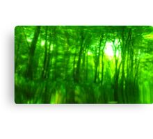 Green Wood Serie n°4 Canvas Print