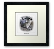 BEACH THICK-KNEE #4 Framed Print