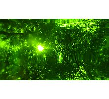 Green Wood Serie n°3 Photographic Print