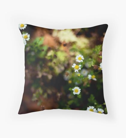 All summer she scattered the daisy leaves Throw Pillow