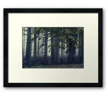 Fog On The Chase Framed Print
