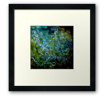 Beauty is the entropy of a starlit sky Framed Print