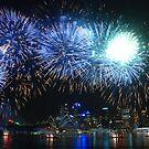 fireworks by steveault