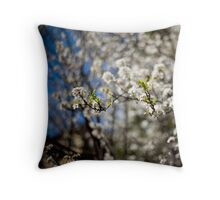 we danced together Throw Pillow