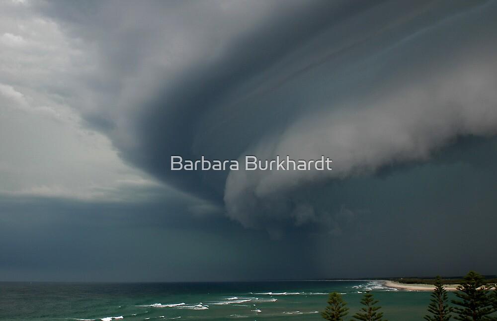 Summer Storm - Bribie Island by Barbara Burkhardt