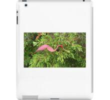 SAFE iPad Case/Skin