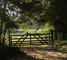 The Gate by Linda Yates