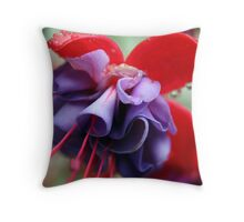 Pink & Purple Fuchsia Flower closeup 2 Throw Pillow