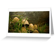 Annual Secret Society for Mushrooms Greeting Card