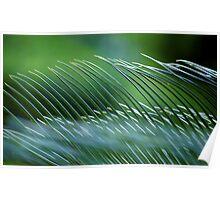 Slight Shift Paradigm... Kauai Sensual Series Poster
