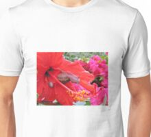 Snail on Hibiscus sinensis Unisex T-Shirt