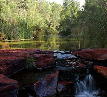 Dales Gorge, Karijini National Park by numnuts