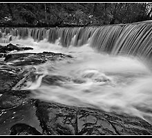 Weir at Hoghton Bottoms by Shaun Whiteman