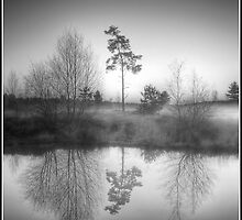 Monochrome Sunrise by Martin Finlayson