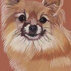 Pomeranian Vignette by Anita Meistrell Putman
