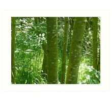 Green tree trunks - Holyrood Park, Edinburgh Art Print