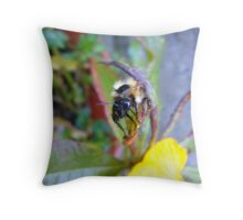 Bee antenna Throw Pillow