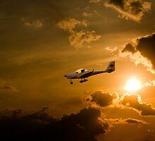Firy Sky Landing by Delfino