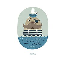 HELLO WALRUS!  Photographic Print