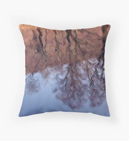 Strange Reflections Throw Pillow