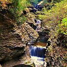 New York's Watkins Glen IV by PJS15204