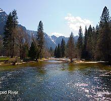 Merced River by William Hackett