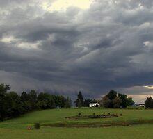 The Gathering Storm by Johannes  Huntjens