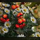 Daisies and Holy - Holidays greeting card by steppeland