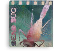 Dead Bug Canvas Print