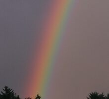 Rainbow at Dalvrecht near Tomintoul by Pamela Baker
