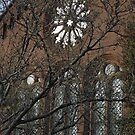Smithsonian Castle Detail by Robert Arconti