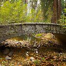 Stone Bridge, November by William Hackett