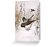 Buntings In The Snow Greeting Card