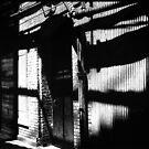 alcatraz II by elisabeth tainsh
