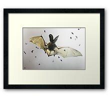 Hungry bat Framed Print