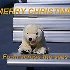 Beary Christmas by Kristina K