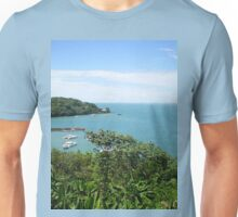 an awesome Suriname