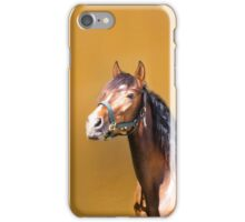 Bay Andalusian Stallion iPhone Case/Skin