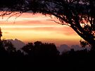 Benella Sunset by Kayleigh Walmsley