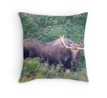 A Growing Boy Throw Pillow