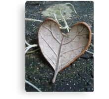 "The ""I Love You"" Leaf Canvas Print"