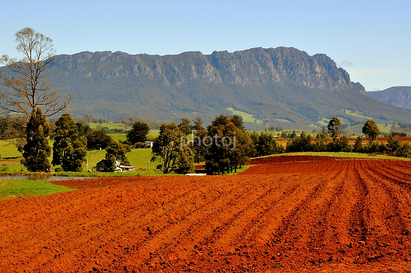 photoj Tas, Mt Roland Farm Land by photoj