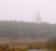 In a Fog by MarianBendeth