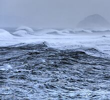Morro Bay Maelstrom by Cathy L. Gregg